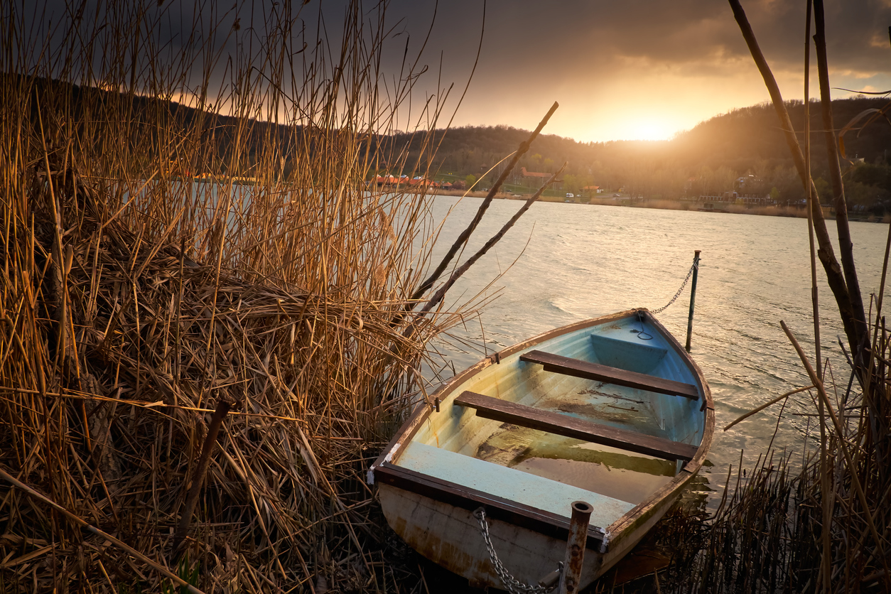 Boat on reed