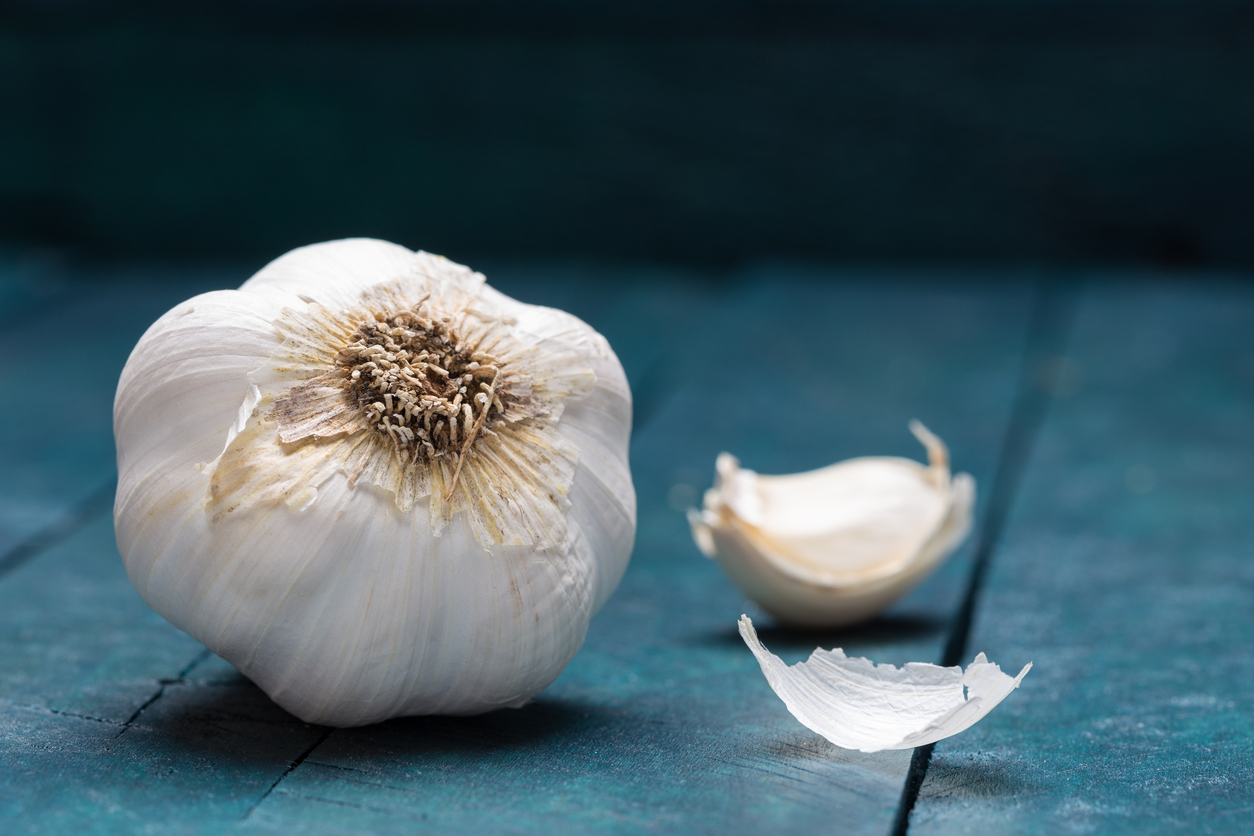 White garlic on petrol-colored wooden background