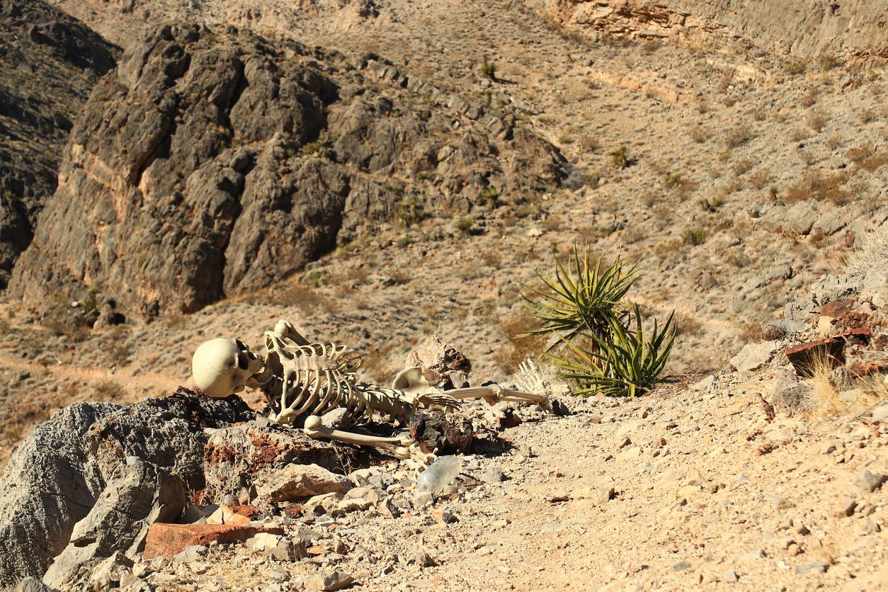 Skeleton in desert